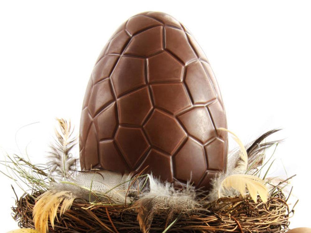Шоколадное яйцо КРОКО в гнезде