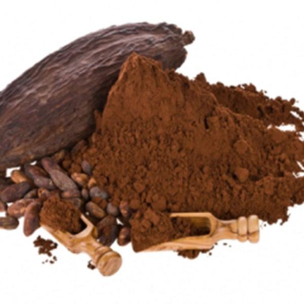 Какао-порошок алкализованный_1
